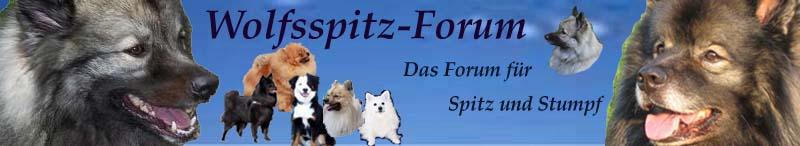 Wolfsspitz-Forum, das Forum für Wolfs- und andere Spitze. - Powered by vBulletin